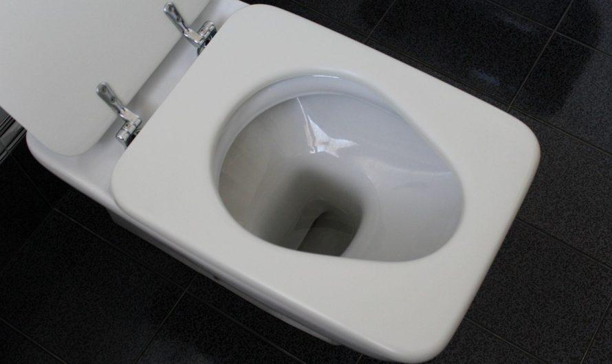 Quand faut-il appeler un plombier pour une toilette bouchée ?